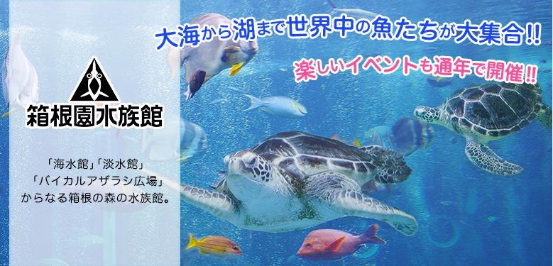箱根園 水族館
